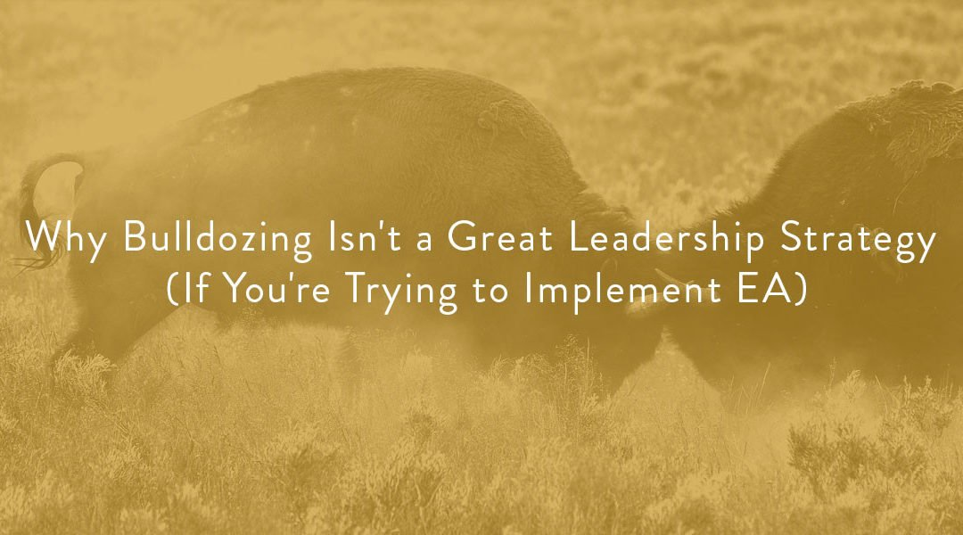 Why Bulldozing Isn't a Great Leadership Strategy (If You're Trying to Implement EA)
